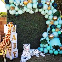 Safari Baby Shower  - Safari