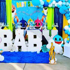Welcoming Baby Dez - Baby Shark