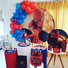 Spider-Man Party - Spider-Man