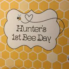 Hunter's 1st bee day - Bumble Bees