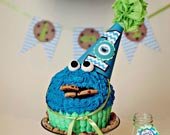 Cookie-monster-birthday-hat-170