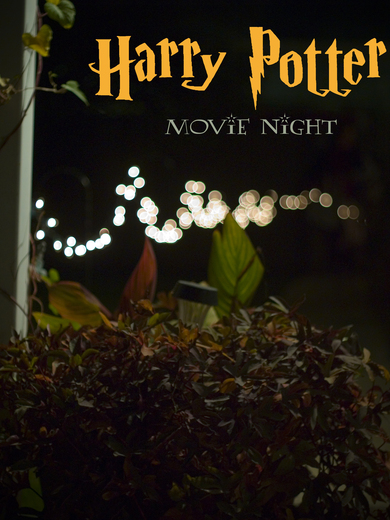 Harry Potter / Movie Night / Featured Photo: