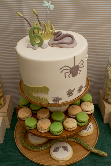 Creepy Crawly Animals / Birthday / Party Photo: This cake was a work ...