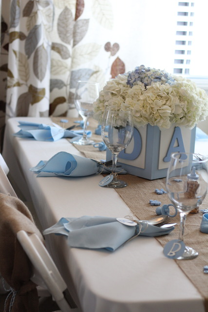 Shabby Chic Boy / Baby Shower/Sip & See / Party Photo: