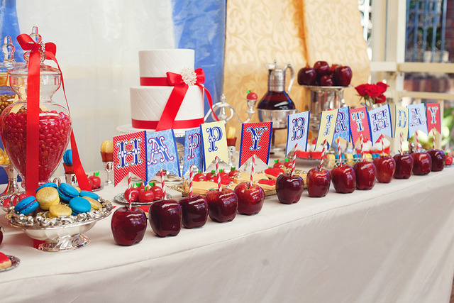 Snow White Princess / Birthday / Party Photo:
