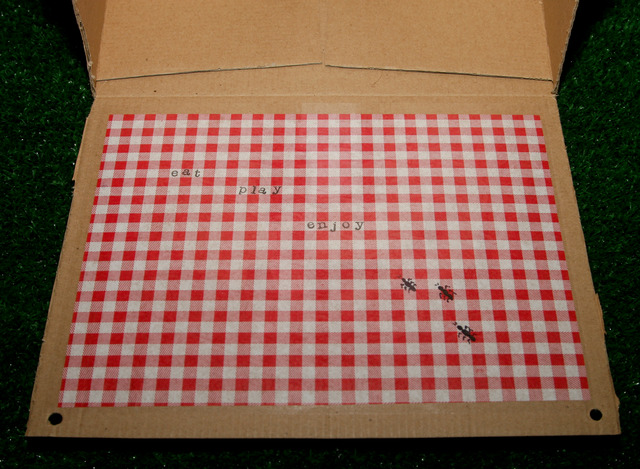 Picnic - Red & White Gingham / Birthday / Party Photo: I created this flap opening so the guest could use it as a little table for them on the ground.