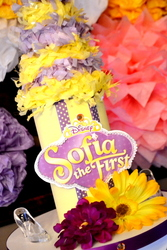 Sofia the First Princess - Sofia the First/disney jr