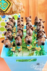 Paxton's 3rd Scooby Doo Party! - Scooby Doo