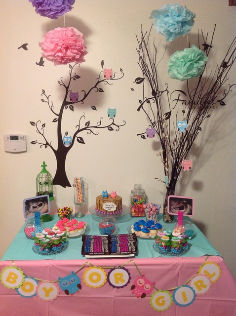 Owls Gender Reveal Party Ideas Photo 2 Of 11 Catch My