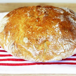 Recipe-no-knead-bread